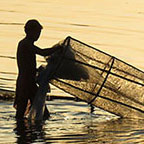 fishing, rajat ghosh, director of Photography
